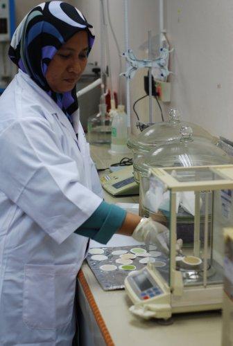 E S Lab 6