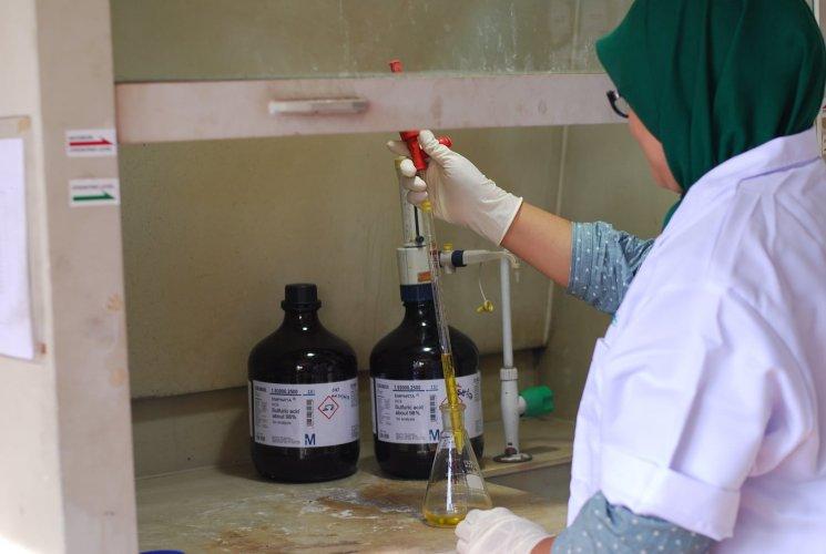 E S Lab 8